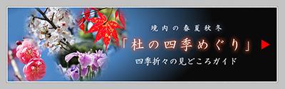 杜の四季めぐり