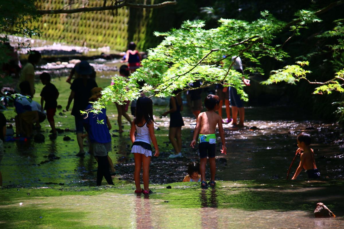 『心の土壌』を育む本物の体験を ~宮川の川遊びに寄せて~