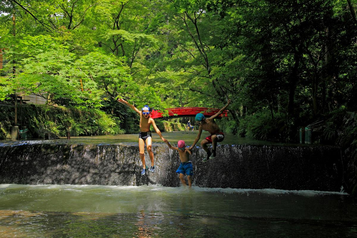 【開催のご案内】第17回 古代の森 小國神社写真コンテスト ~作品の募集を開始いたします~