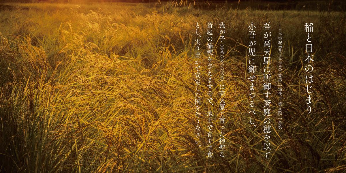 御大礼(天皇陛下のご即位の儀式の総称)と日本の成り立ちを深く知るためのお話 ~私たちの国は、稲穂の国~