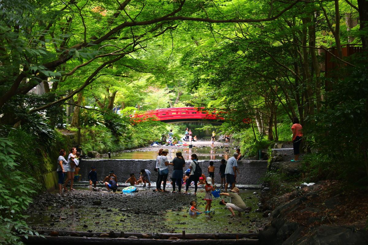 小國神社の夏 ~宮川の川遊びを楽しもう~