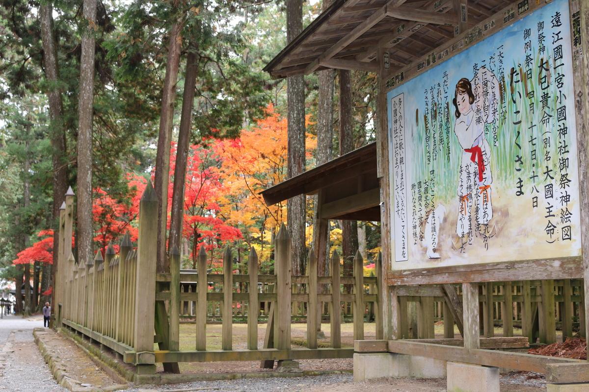 平成29年 小國神社 紅葉情報⑨「美しく色づいています/照紅葉(てりもみじ)」〇見頃を迎えています〇